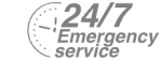 24/7 Emergency Service Pest Control in Swanley, Hextable, Crockenhill, BR8. Call Now! 020 8166 9746